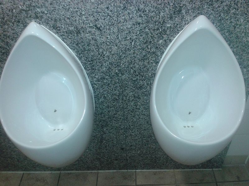 Urinals with a fly drawn on them to encourage users to aim better.