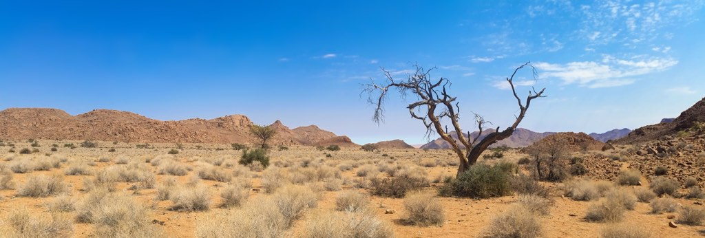 A hot, arid desert with no water in sight.